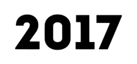 Формы отчетов о деятельности 2017